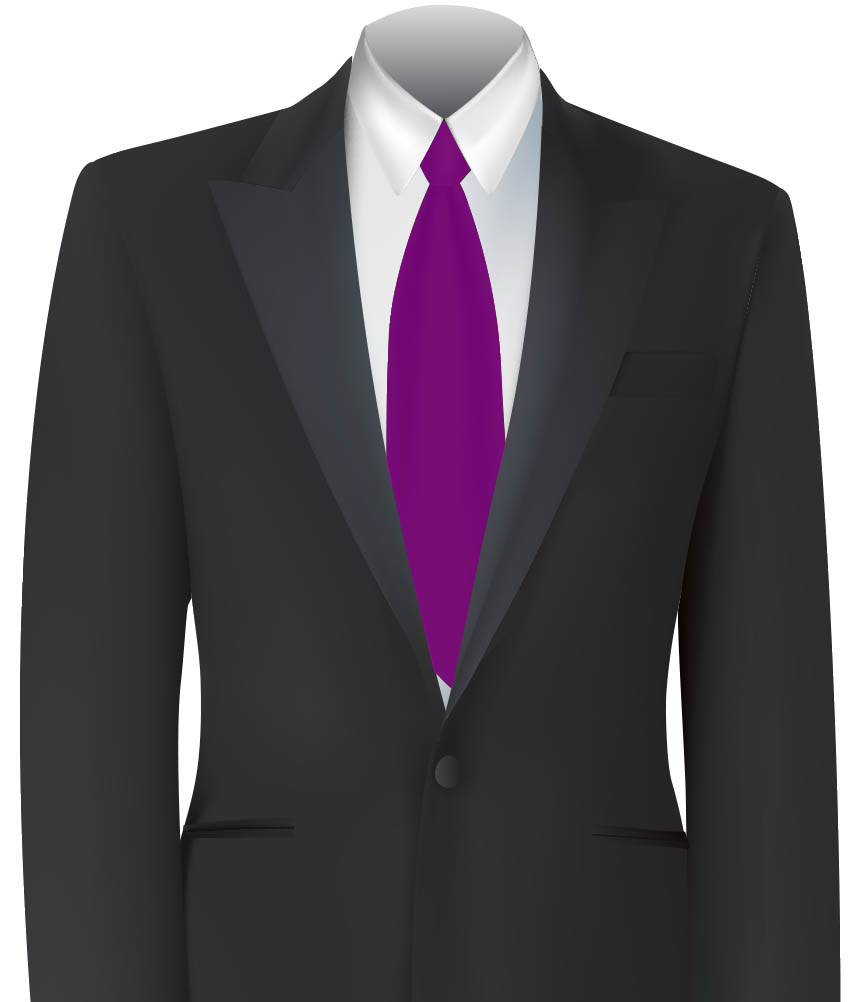 Purple Colour Tie